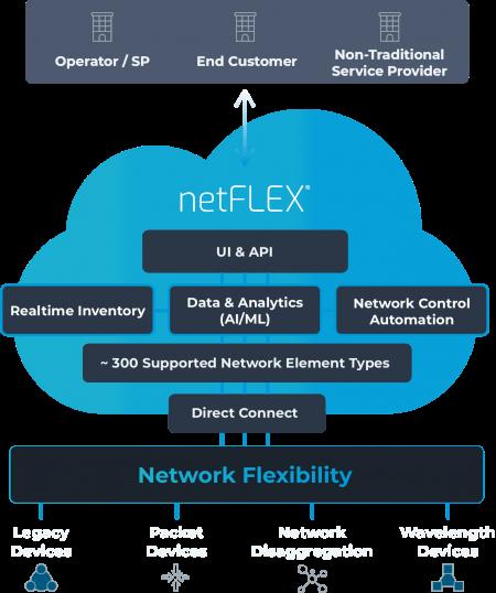 netFLEX_structure on blue